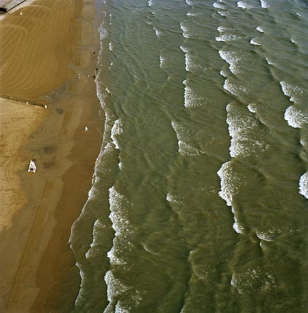 Terry Evans, Lake Michigan Beach and Dogs, Chicago, July 23, 2003